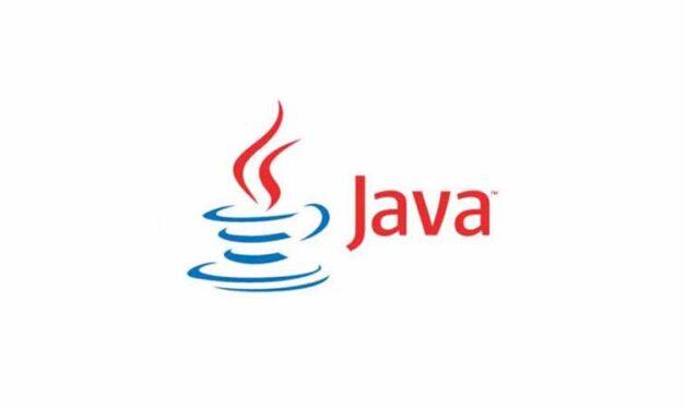 Java Runtime Environment 8 Build 261 (32-Bit)