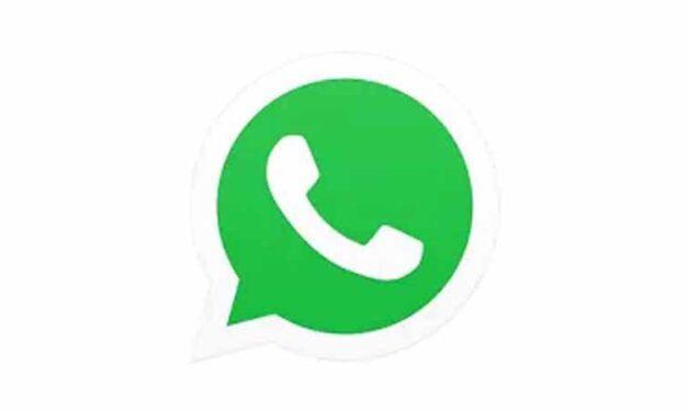 WhatsApp for PC 2.2035.14 (64-Bit)